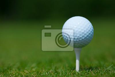 Cuadro pelota de golf en una camiseta blanca con una hierba verde en el fondo