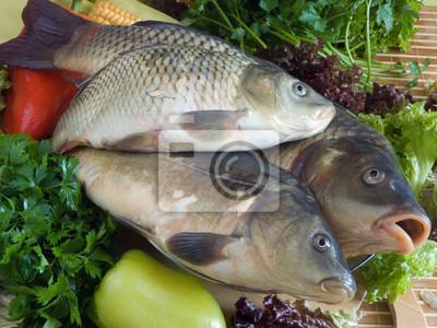 Pescados de la carpa