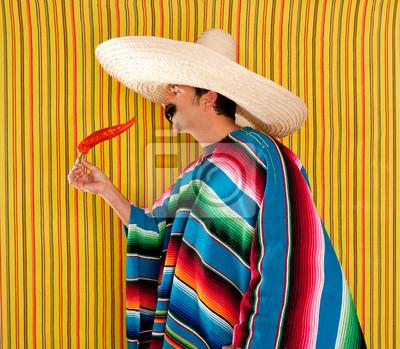 Pimienta caliente del chile mexicano típico sarape poncho pinturas ... c4f2410a09e