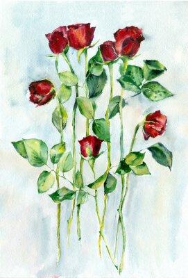 Cuadro Pintura de acuarela. Rosas rojas con hojas verdes en un largo tallo.
