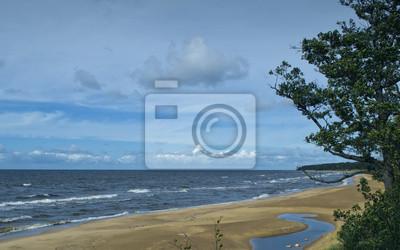 Playa de arena del mar Báltico, Vidzeme, Letonia
