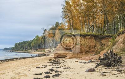 Playa pedregosa en el golfo de Riga, el Mar Báltico, Letonia