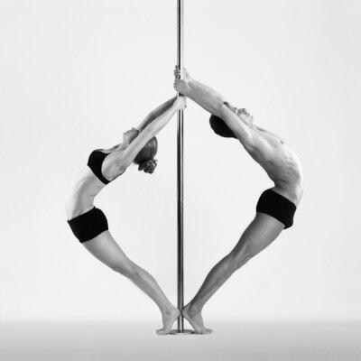 Cuadro Pole dance