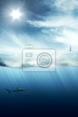 Cuadro Por encima y por debajo del agua