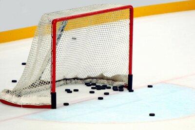 Cuadro Porta dischi estafadores hockey