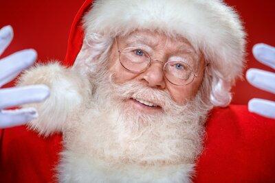 portrait of a jolly Santa Claus