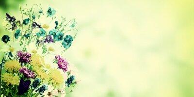 Cuadro Postal del vintage con las flores salvajes