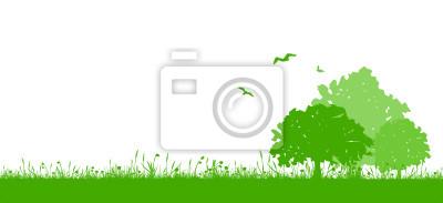 Pradera paisaje con árboles de hoja caduca