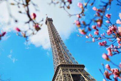 Cuadro Primavera en París