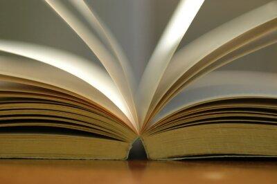 Cuadro Primer libro abierto