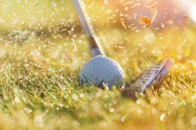 Cuadro Primer plano de la pelota de golf.
