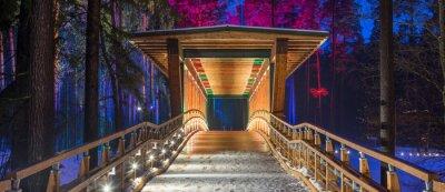 Cuadro Puente de madera en el parque forestal. Noche luces multicolores.