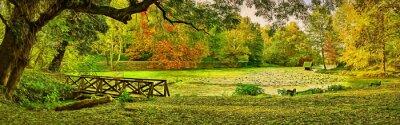 Cuadro Puente escena en el otoño - Lipnik (Teketo) parque, Nikolovo zona de la aldea, Bulgaria. Arte moderno de la ilustración de la pintura al óleo