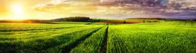Cuadro Puesta de sol panorama Paisaje rural