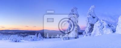 Puesta de sol sobre los árboles congelados en una montaña, Levi, Laponia finlandesa