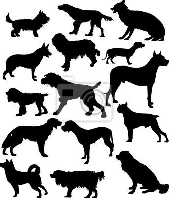 quince siluetas de perro aislado en blanco