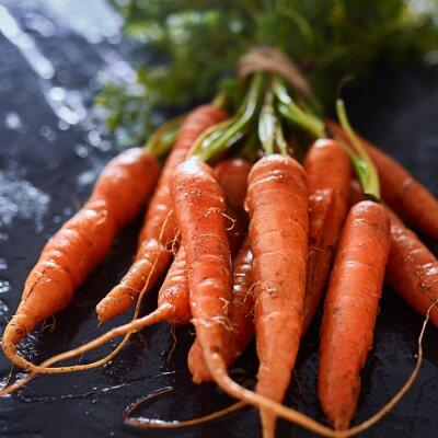 Cuadro Racimo de recién recogido zanahorias cerca