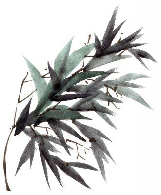 Cuadro Rama de hojas de bambú acuarela