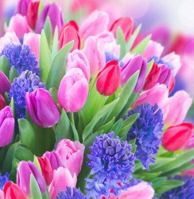 Cuadro Ramo de jacinto azul y tulipanes