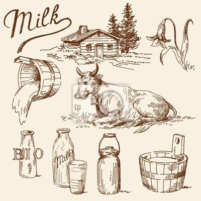 recolección de la leche