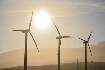Renewable Energy Concept