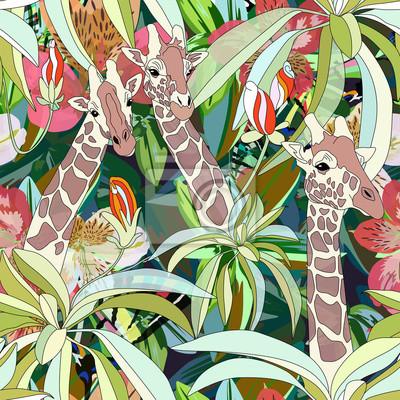 fe593ecd44 Cuadro Resumen ilustración de la acuarela de tres jirafas, selva tropical  de fondo, hojas