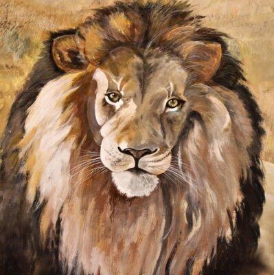 Cuadro Retrato de enorme hermoso macho león africano