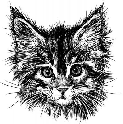 Cuadro retrato de gato