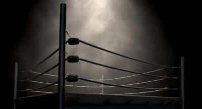 Cuadro Ring de boxeo clásico de la vendimia