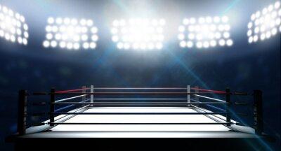 Cuadro Ring de Boxeo En Arena