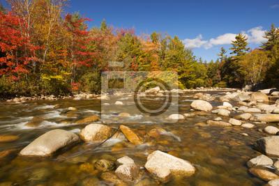 Río a través de follaje de otoño, río rápido, New Hampshire, EE.UU.