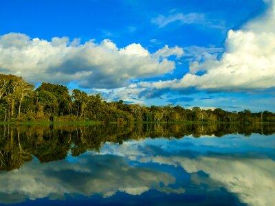 Cuadro Río Amazonas