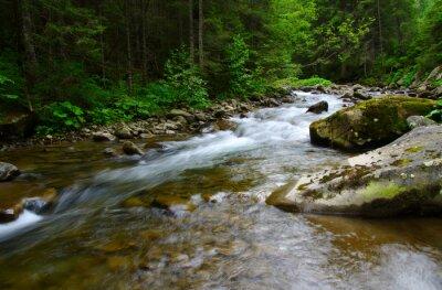 Cuadro río de montaña