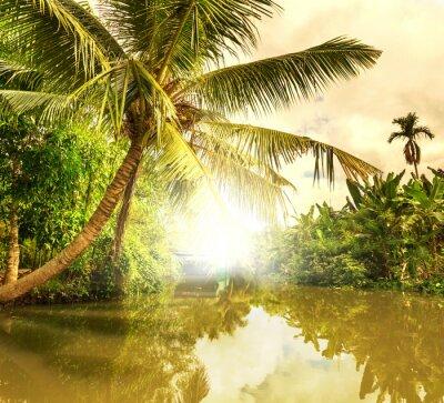 Cuadro Río tropical