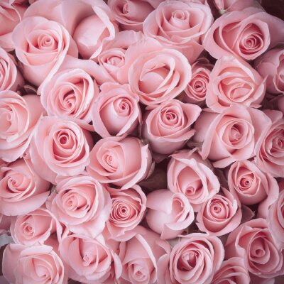 Cuadro rosa rosa ramo de flores fondo de la vendimia