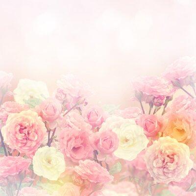 Cuadro Rosas de fondo