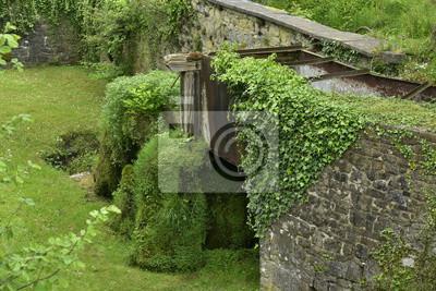 Rueda y vestigios del antiguo moulin en el agua cubierta de la vegetación al lado de los jardines de Eau d'Annevoie
