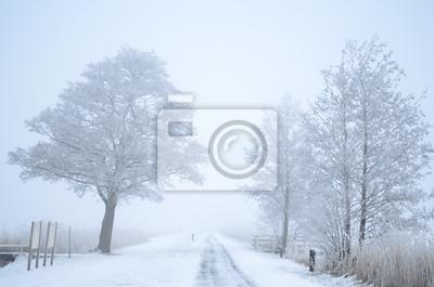 Ruta de invierno brumoso en la nieve