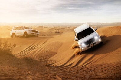 Cuadro Safari en el Desierto