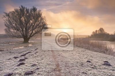 Salida del sol sobre un paisaje congelado en los Países Bajos