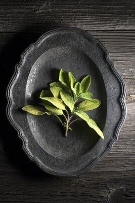 Cuadro Salvia