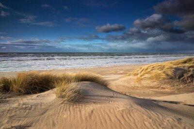 sand dunes on North sea coast