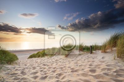 sand path to sea beach at sunset
