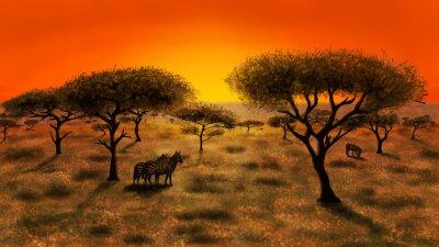 Cuadro Savannah en la puesta del sol