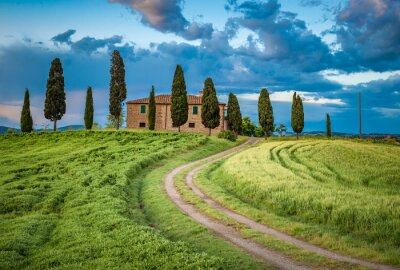 Cuadro Scenic view of typical Tuscany landscape, Italy