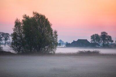 serene misty sunrise on dutch farmland