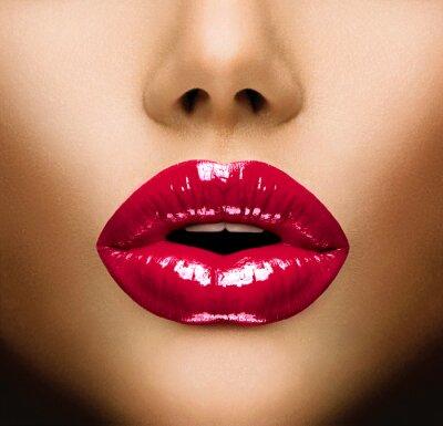 Cuadro Sexy Lips. Primer hermoso maquillaje. Beso