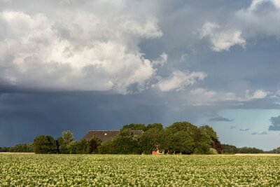 shower cloud over Dutch farm and potato field