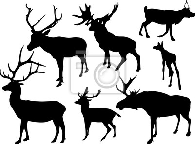 siete siluetas de ciervos aisladas