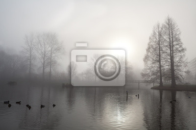 silueta del árbol, puente y el lago en la niebla